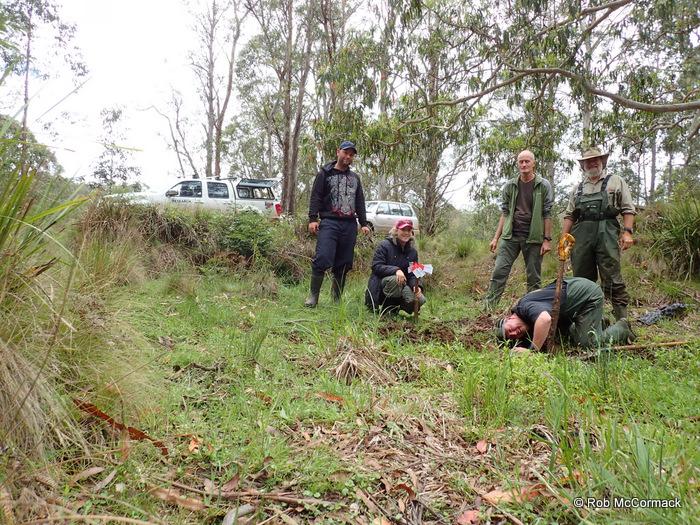 Josh & Tegan Moylan, Ian Baird, Rob McCormack and Craig Burnes-digging a E. maccai burrow