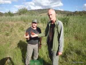 Craig and Ian with Euastacus Clarkae in Werrikimbe National Park