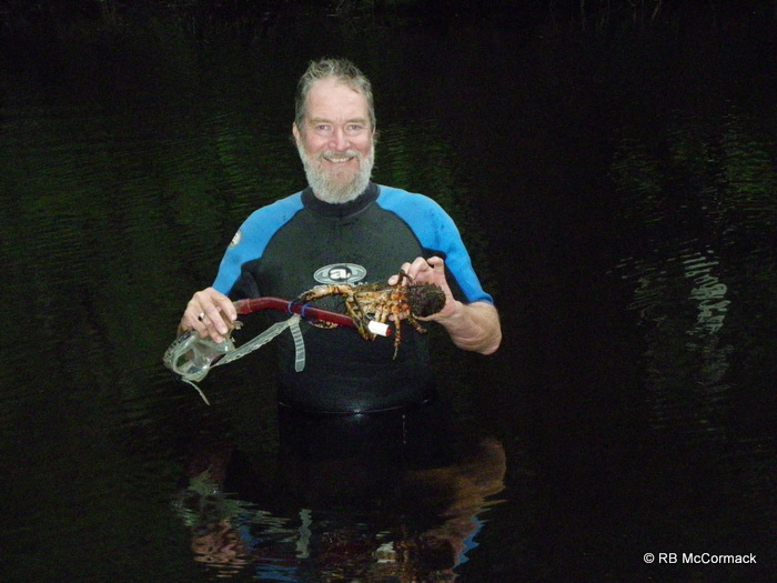 Rob McCormack, snorkeling for giant spiny crayfish in the Clyde River